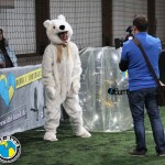 Bubble Football Meisterschaft 8